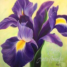 Iris Painting, Flower Painting Canvas, Flower Paintings, Flower Drawings, Flower Artwork, Pastel Paintings, Iris Flower Pictures, Purple Iris, Dark Purple