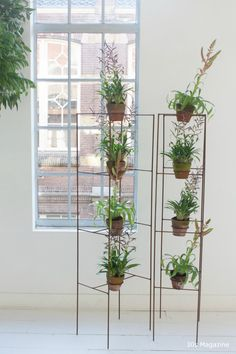 plant stand shelf room divider thing. where are these available?? #wishlist