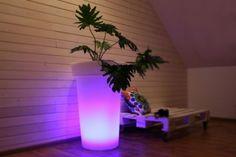 Donica LED Jirafe - świecące donice to nowość na światwych rynkach. Dzięki nowoczesnym technologiom efekt wizualny jest wręcz niesamowity. By BlissDesign.