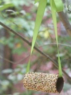 WC rolletje insmeren met pindakaas en door het  vogelvoer rollen. Leuk lint er door heen en ophangen.