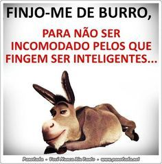 frases divertidas em portugues - Google Search