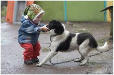 a childs best friend