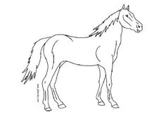 If you love horses you will find this Horse in the Pasture coloring page a fun poster to color and place on your room wall or door. Enjoy a pasture of . Farm Animal Coloring Pages, Coloring Pages For Kids, Coloring Sheets, Coloring Books, Paper Animals, Kid Crafts, Farm Animals, Art Lessons, Middle School