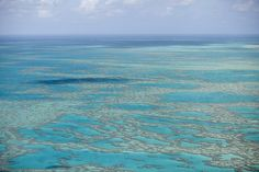 """Great Barrier Reef, Australia - Composed of over 2900 individual reefs, the Great Barrier Reef is the largest of its kind in the world—so large it can be seen from outer space—and also the  """"biggest single structure made by living organisms."""" Due to coral bleaching from pollution, this is a site to see asap."""