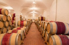Inside Klein Constantia n cellar. Wine Making, Day Tours, Cellar, Day Trip, South Africa, Classic, Travel, Derby, Viajes