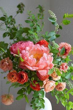 Spring bouquet of ranunculus, peonies and choke cherry sprigs. Spring bouquet of ranunculus, peonies Fresh Flowers, Spring Flowers, Beautiful Flowers, Spring Bouquet, Vase Of Flowers, Peach Flowers, Exotic Flowers, Colorful Flowers, Draw Flowers