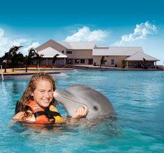 Dolphin Park, Grand Cayman, Cayman Islands...