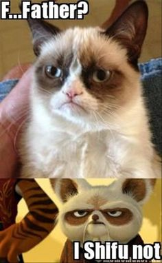 grumpy cat, father #GrumpyCat #Memes