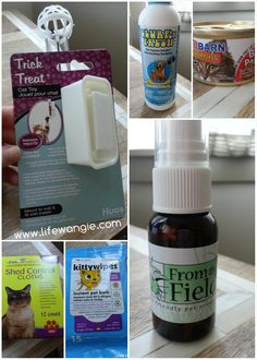 @PetBox Review, Coupon Code and Giveaway! from Life With Angie (Angie Kritenbrink) @Angie Kritenbrink http://www.lifewangie.com/2014/06/petbox.html
