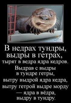 ОФИГЕТЬ не ВСТАТЬ!