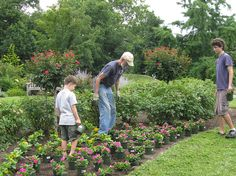 """Teaching Kids to Garden"" w/ @jmgkids on #plantchat Gardening Tips 