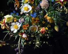 Putnam & Putnam is a boutique floral design company based in New York. Specializing in editorial, weddings, large scale installation and local deliveries. Wild Bees, Flora Design, Instagram Design, Flowers Nature, Fall Flowers, Floral Arrangements, Flower Arrangement, Wedding Designs, Planting Flowers