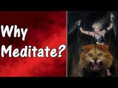 We all have to deal with stress from either work or school. You can't close your eyes to make it go away but you can find peace so you can deal with it. One technique that can offer this is called Zen meditation. Zen meditation is Meditation For Anxiety, Zen Meditation, Learn To Meditate, Medical Advice, Stress, Videos, Animals, Tips, Animales
