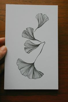ginkgo..tattoo maybe?