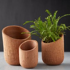 With a cool, modern asymmetrical opening, this stoneware pot adds an effortlessly natural touch to your indoor gardens.- Stoneware- Drainage hole not included- Indoor use only- Wash with warm water- ImportedSmall: diameterMedium: diameterLarge: diameter Ceramic Plant Pots, Ceramic Flower Pots, Clay Pots, Terracotta Flower Pots, Ceramic Vase, Pottery Pots, Sculptures Céramiques, Terracota, Outdoor Garden Furniture