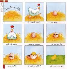 """Résultat de recherche d'images pour """"les petites poules exploitation maternelle"""""""