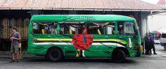 Dominica Bus