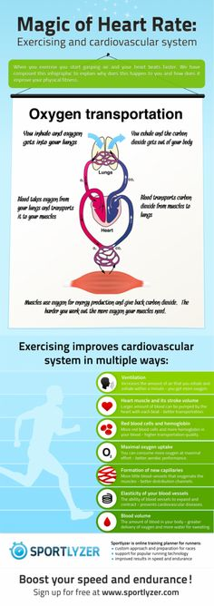 Improving your cardiovascular system