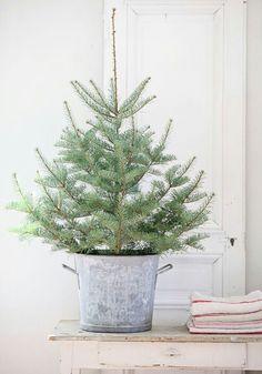 Little environment friendly christmas tree
