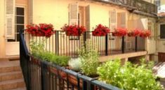 Commodore - 1 Star #Hotel - $59 - #Hotels #France #Nice http://www.justigo.com.au/hotels/france/nice/commodore_70650.html