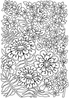 Welcome to Dover Publications - Spark Flower Fun  Davlin Publishing #adultcoloring  Davlin Publishing #adultcoloring