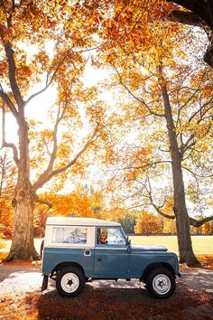 vintage car and fall trees #views
