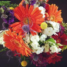Hailey's Bouquet // Phlox, thistle, gerbera daisies, dianthus, delphinium, crespedia geranium, spray roses and fern leaves.