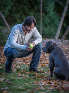 Keanu Reeves as John Wick Funny Dog Captions, Dog Quotes Funny, Funny Dog Pictures, Funny Dogs, Dog Sayings, Pitbull Pictures, Keanu Reeves John Wick, Keanu Charles Reeves, John Wick Film