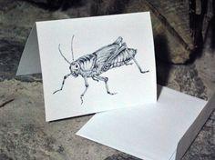 Grasshopper notecard, greeting card, insect illustration, framable artist card, grasshopper artwork, hand drawn illustration, blank card art