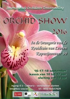 Orchid Show 2016  http://jungletropicale.com/2016/09/orchid-show-2016/