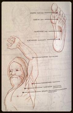 Easy Helpful Ayurvedic Massage Techniques For ayurvedic massage school Cupping Therapy, Body Therapy, Massage Therapy, Acupressure Treatment, Acupressure Points, Massage Tips, Massage Techniques, Massage Envy, 7 Chakras Meditation