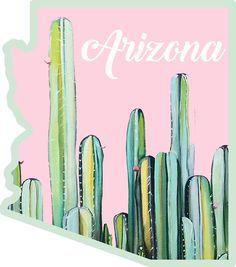 Arizona Cactus State by baileymincer