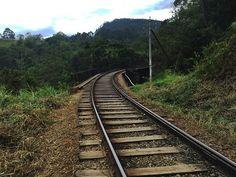Mit dem Zug durch Sri Lanka  #srilanka #srilankatravel #srilankan #junglelife #reise #travel #traveling #reiseblog