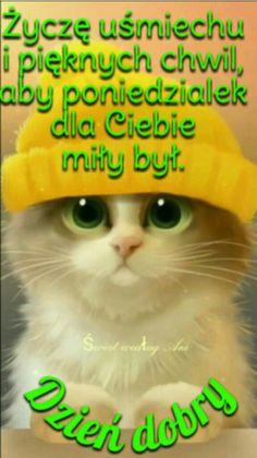 Grinch, Good Morning, Disney, Polish, Buen Dia, Bonjour, Good Morning Wishes, Disney Art