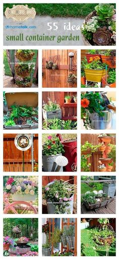 Gardening Idea easy container gardening: 7 containers you never thought of
