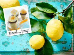 Zitroneneis - Zutaten für 16 Portionen: