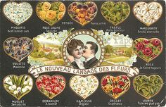 """""""The New Language of Flowers"""" with Meanings Antique Vintage French Postcard"""