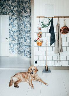 Home of Johanna Bradford. Photo: Kristin Lagerqvist