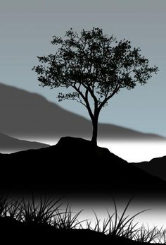 Serene - Tree Silhouette