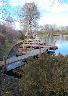 Walkway on 4-acre lake in the Japanese Garden. Missouri Botanical Garden, Botanical Gardens, Outdoor Furniture Sets, Outdoor Decor, Walkway, Garden Bridge, Acre, Outdoor Structures, Japanese