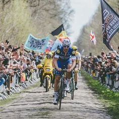Paris Roubaix 2016 Tom Boonen @brakethrough_media