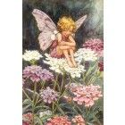 Wildflower Fairy Vintage Wall Art