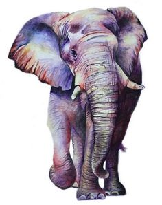 elephant Source by African Art Paintings, Animal Paintings, Animal Drawings, Cute Drawings, Watercolor Animals, Watercolor Art, Elephant Artwork, Elephant Print, Elephant Elephant