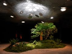 Lowline underground park. A 'remote skylight' treats light like liquid—transporting it to another location via  system of satellite-like solar panels, helio tubes from street level to the subterranean trolley station & a reflective umbrella-shaped dome to distribute the sunlight to encourage plant growth
