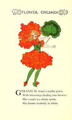 "Geranium ~ from ""Flower Children; the little cousins of the field and garden"", 1910"