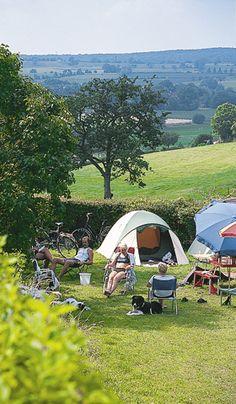 Rozenhof Limburg Wall Pepar, Camping Glamping, Westies, Caravan, Trip Planning, Outdoor Gear, Travel Inspiration, Tent, Travelling