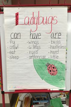 Ladybugs can, have, are chart