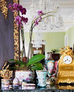 pretty orchid incorporated into vignette