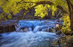 Fossil Creek Arizona