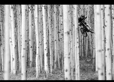 Into the woods! Downhill mtb